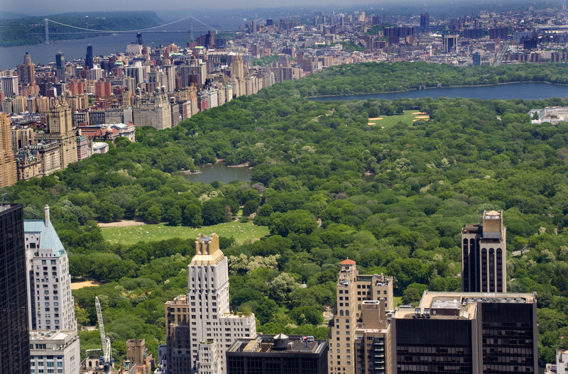 Zakaz jazdy samochodem w nowojorskich parkach