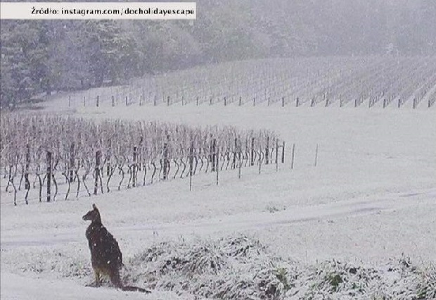 W Europie upały, a w Australii rekordowe opady śniegu