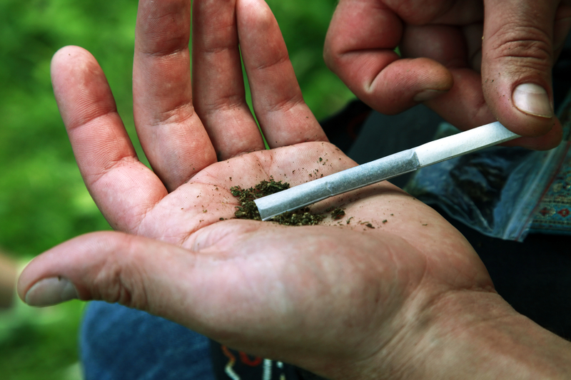 Seattle anulowało karę dla organizatorów festiwalu marihuany