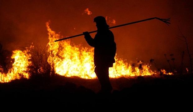 21-latek podpalił stodołę i lasy. Został aresztowany w gminie Pilica