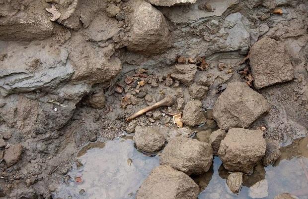 Kości ludzkie odkryte w Ciechocinku mogą należeć do mieszkańców zmarłych na panującą w tym czasie cholerę
