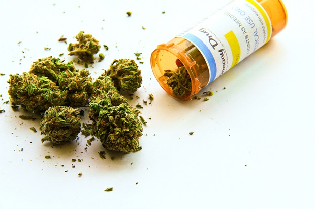 Sąd na Florydzie: 77-latek może sam hodować marihuanę do celów medycznych
