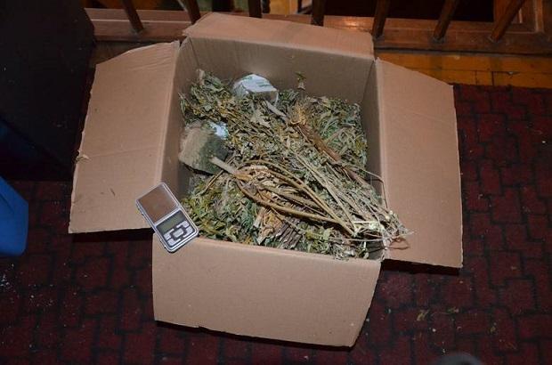Bracia z Zielonej Góry prowadzili narkotykowy biznes