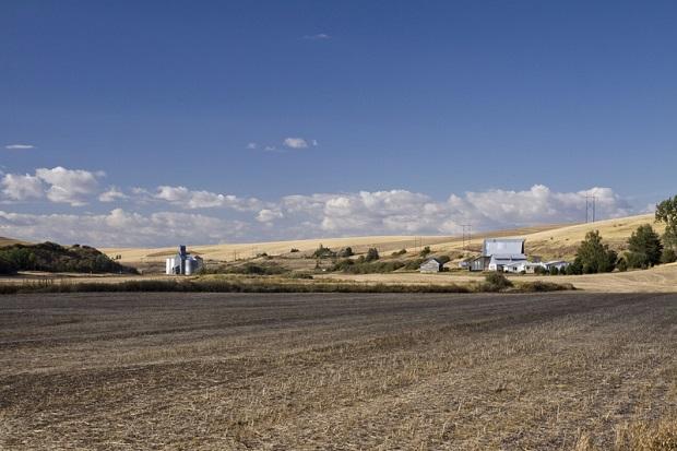 Zmiany klimatyczne spowodują wzrost cen wody i żywności