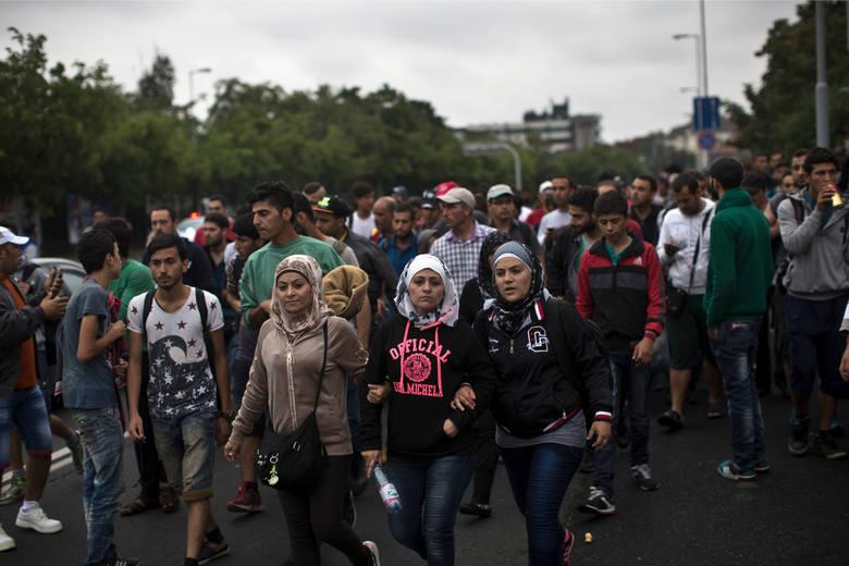 Seattle chce pomóc uchodźcom z Syrii