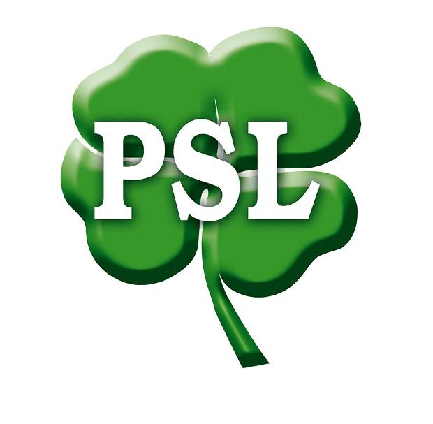 PSL waha się w sprawie wspólnych list opozycji w wyborach do sejmików