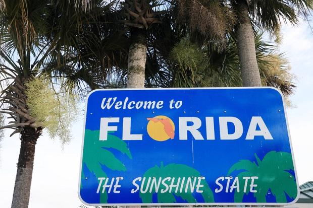 Na Florydzie jest tak zimno, że z drzew spadają iguany
