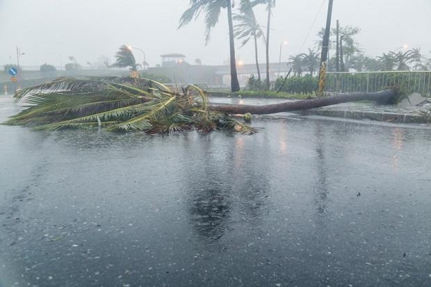 Filipiny – silny tajfun Koppu uderzył w wyspy.
