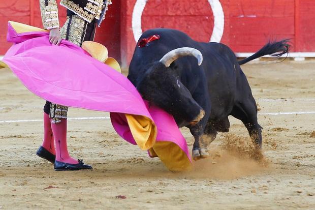 Torreador – nowy zawód w hiszpańskich szkołach