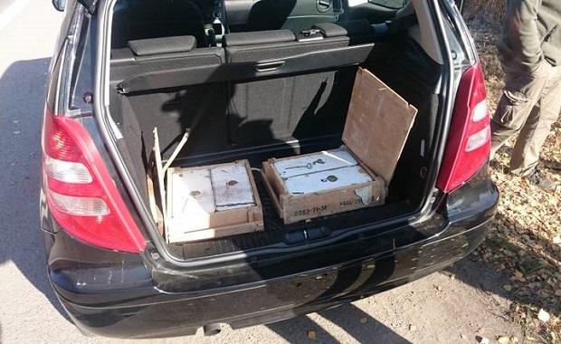 Policjanci zatrzymali w Zabrzu mężczyznę, który przewoził 2,9 tys. naboi