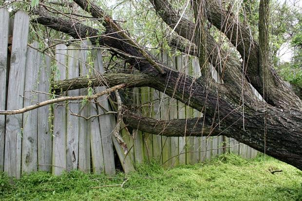Wichury w Wielkopolsce. Zerwane sieci energetyczne, uszkodzone dachy