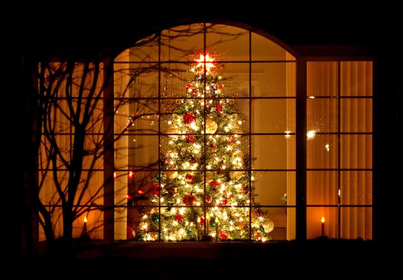 Na Brooklynie rozbłysnęło Bożonarodzeniowe Drzewko