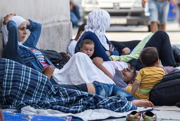 150 uchodźców w Nowym Porcie ? Miejscy radni oburzeni