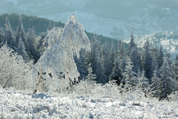 W wyższych partiach Beskidów jest już 5 centymetrów śniegu i ciągle pada