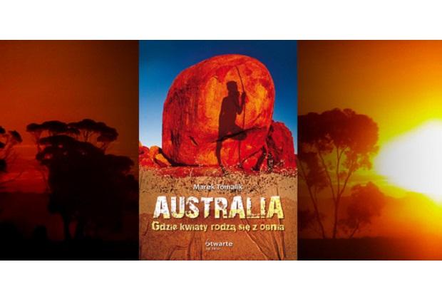 W Australii zdarza się, że jest więcej kangurów niż ludzi