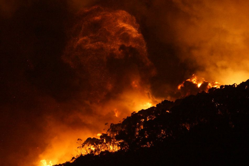 Australia: Wzrósł bilans ofiar pożarów buszu