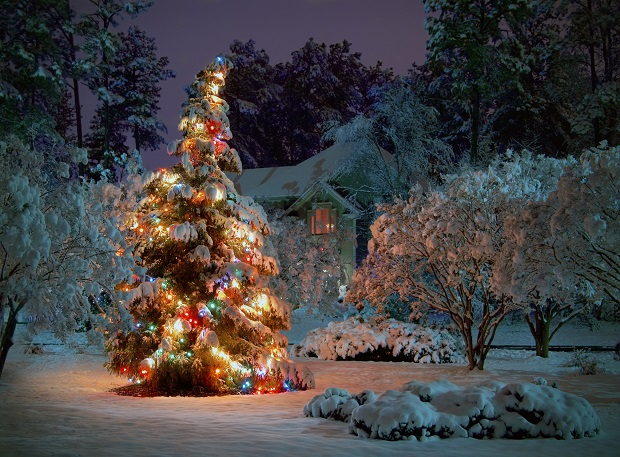 Ewangelików i katolików łączy także Boże Narodzenie