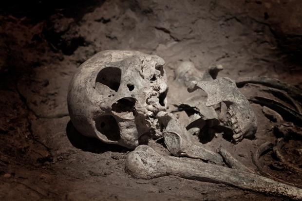 W piwnicach aresztu śledczego w Białymstoku znaleziono ludzkie szkielety