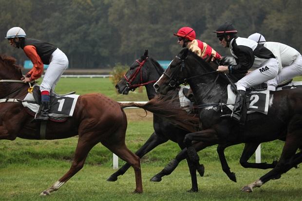 Koń na dopingu – zwycięzca Wielkiej Pardubickiej zdyskwalifikowany!