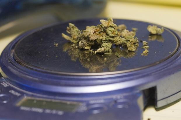 Massachusetts podzielone ws. legalizacji marihuany