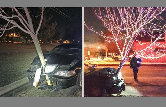 Hit policyjnego Facebooka: kobieta jadąca z drzewem przyczepionym do… przedniego zderzaka