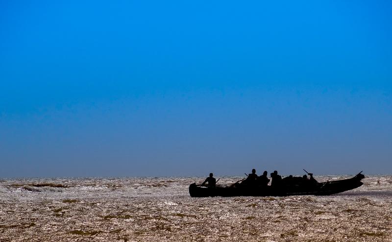 KE proponuje ograniczenie połowów dorszy na Bałtyku. Działacze KOD-u i opozycji – do dzieła! Brońcie polskich rybaków!