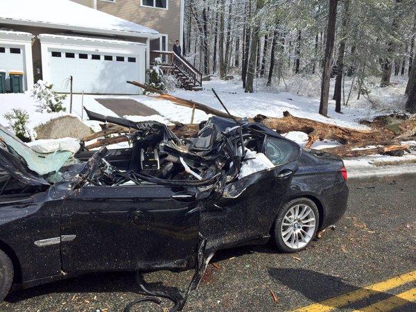 Drzewo runęło na samochód, zabiło dwie osoby