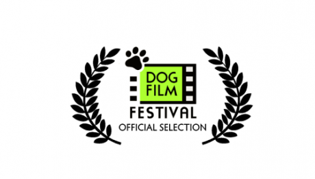 DogFilmFest