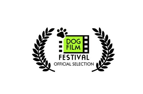 Festiwal psich filmów w Seattle