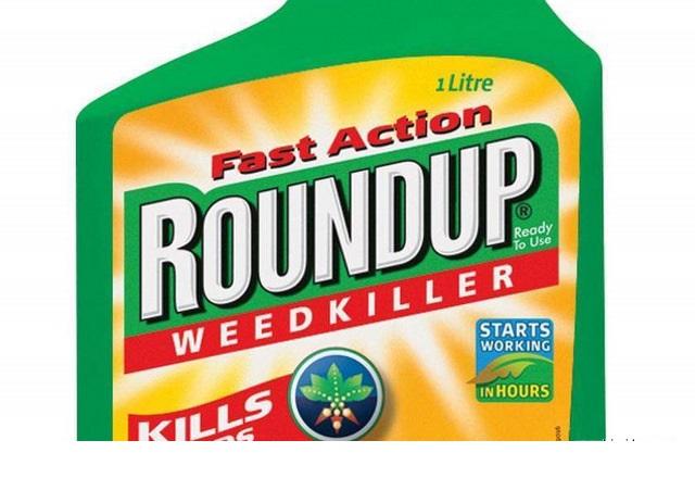 8 miliardów dolarów jest gotowy zapłacić niemiecki Bayer amerykańskim użytkownikom chwastobójczego środka Roundup