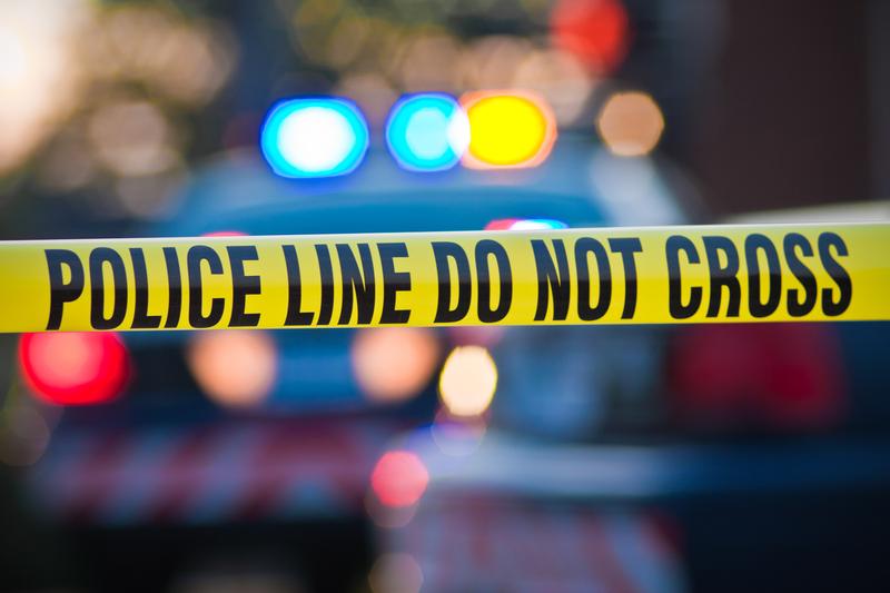 9-latek z Michigan zastrzelił swoją matkę
