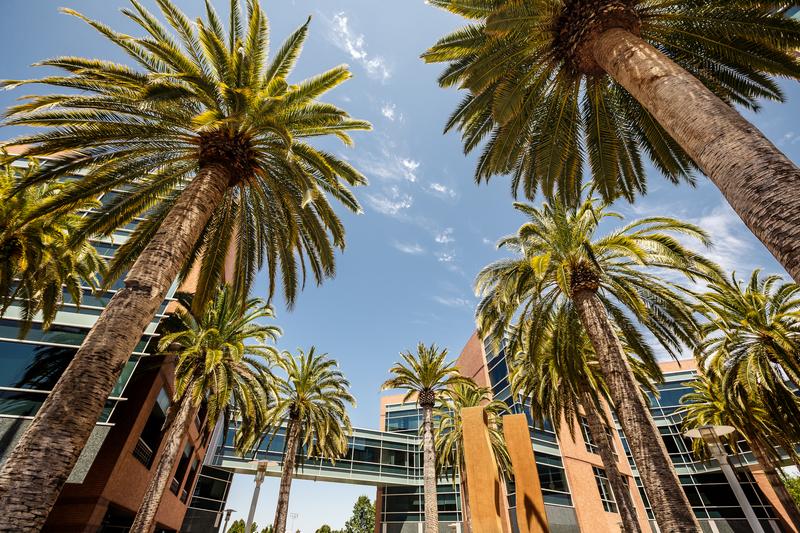 Kalifornia wydłużyła ambitne prawo klimatyczne o 10 lat