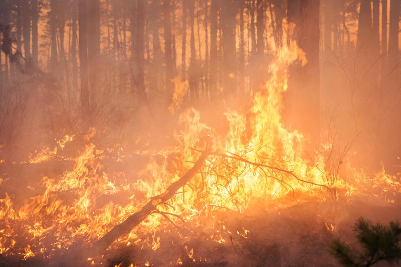 Szalejący pożar hamuje wydobycie ropy w Kanadzie