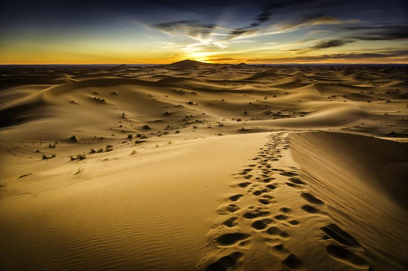 Ciała 34 osób, w tym 20 dzieci, znaleziono na pustyni w Nigrze