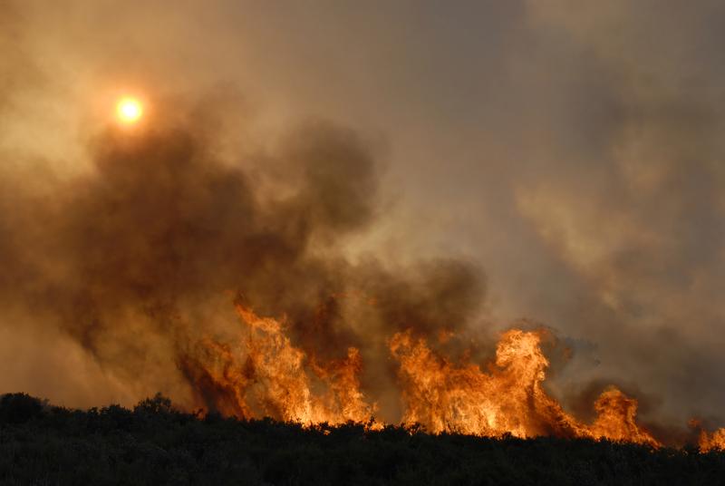 Hiszpania: Ewakuacja na Gran Canaria spowodowana pożarami lasów