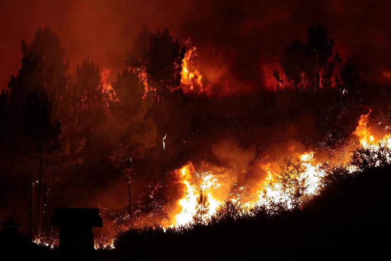 Pożary lasów na południu Francji