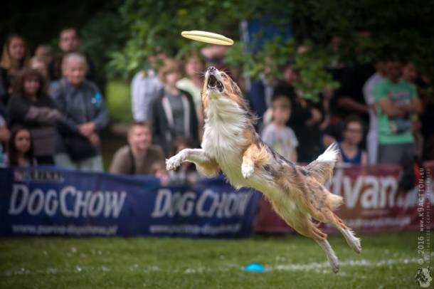 Zmagania Latających Psów w Sopocie