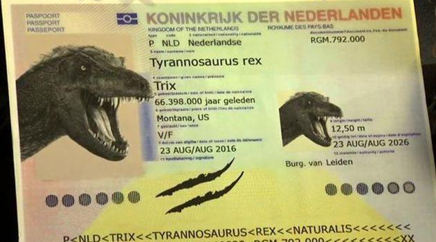 Najstarszy pasażer na O'Hare – Tyrannosaurus Rex