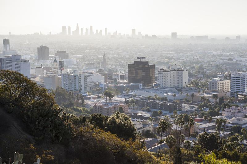 Policja rozbiła dwa gangi w Los Angeles