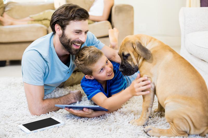 Dzieci wychowujące się z psem lub kotem lepiej radzą sobie ze stresem
