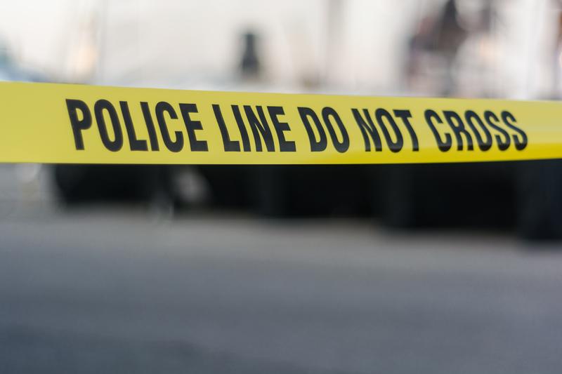 Dwóch mężczyzn zastrzelonych podczas włamania do domu w Park Manor