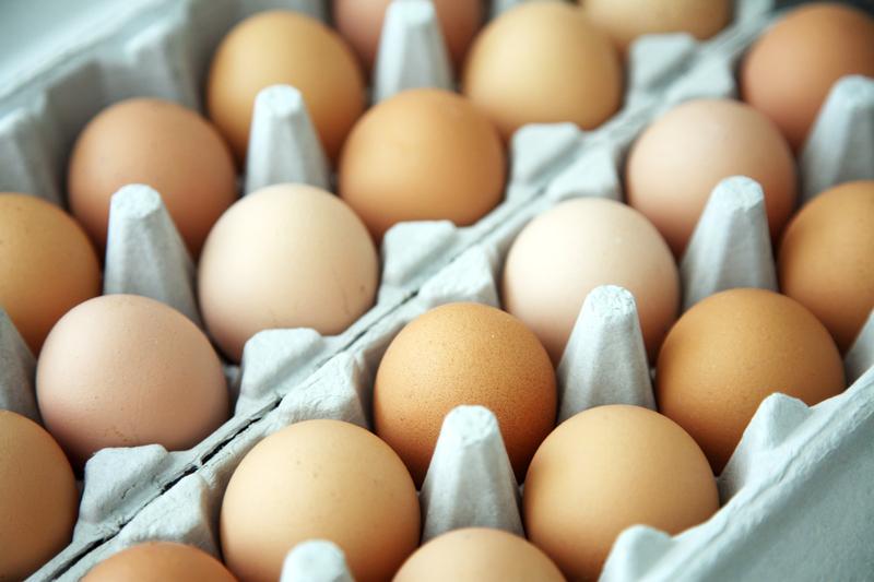 Producenci jaj boją się bankructwa: Musimy przejąć obowiązki rolnictwa