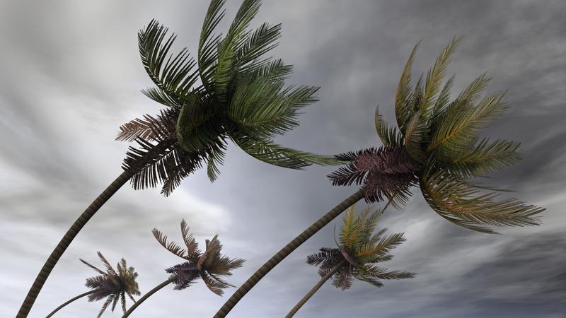 Huragan Dorian przybiera na sile. Floryda zagrożona. Stan ten ma duże znaczenie dla reelekcji Trumpa