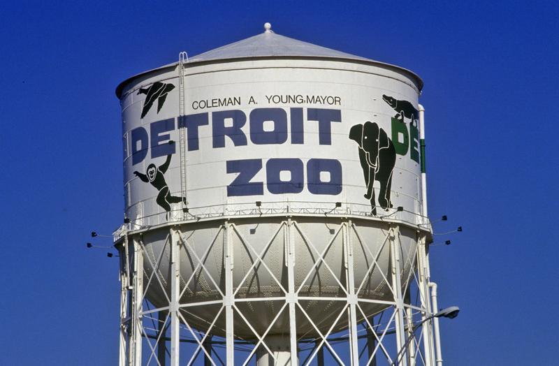 W Detroit Zoo zmarła wilczyca