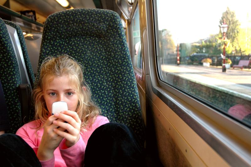 Polonijne dzieci z ulgą na przejazdy w Polsce