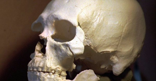 Indianie pochowali liczące ponad 8 tys. lat kości człowieka z Kennewick