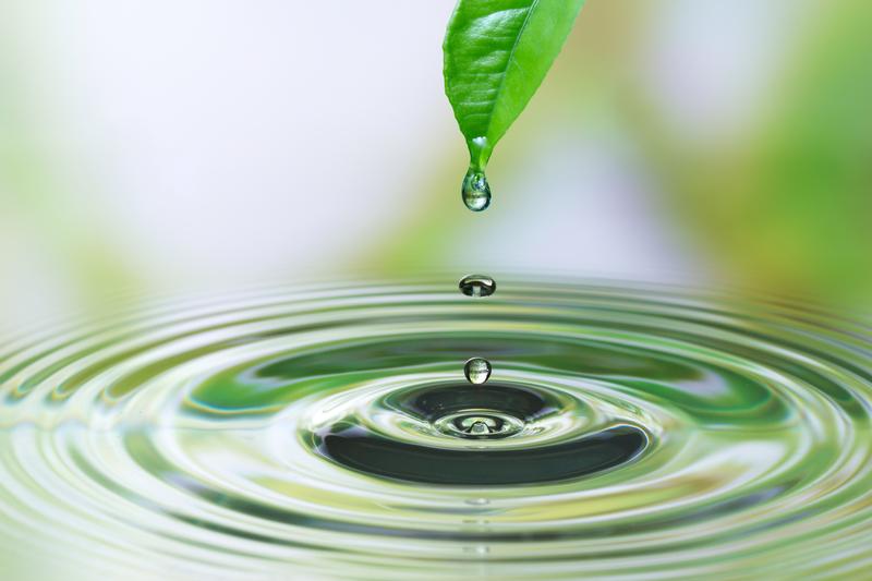 Dziś Światowy Dzień Wody