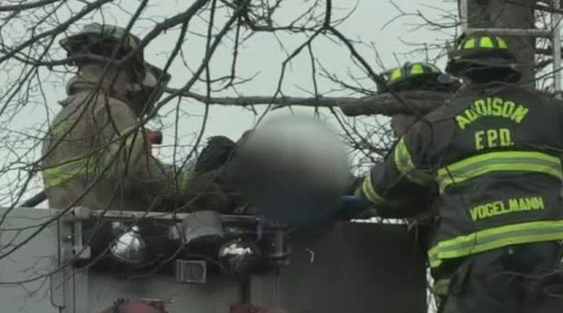 Mężczyzna śmiertelnie porażony prądem podczas przycinania drzew