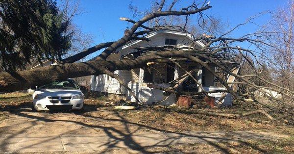 Po wichurach jeszcze 85 tys. mieszkańców Michigan bez prądu