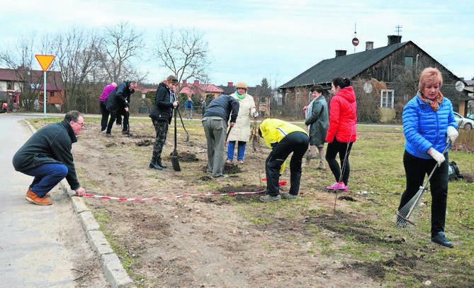 Działacze opozycji drzewa posadzili, a urzędnicy je… wykopali